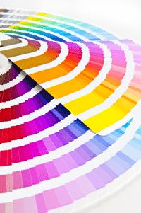 colour and logo design