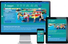 new website design northern beaches
