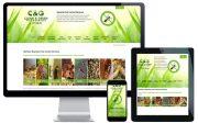 web design northern beaches seo