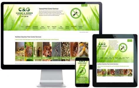 web-design-northern-beaches-seo