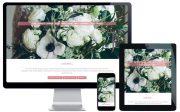 northern beaches wordpress website designer