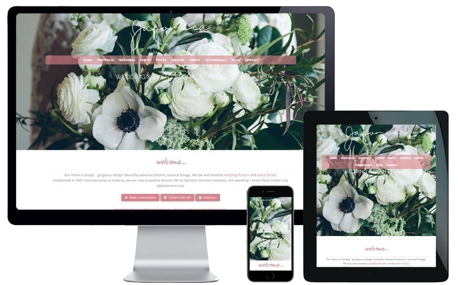 northern beaches wordpress website designer