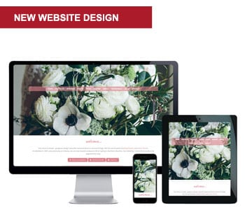 website designer northern beaches