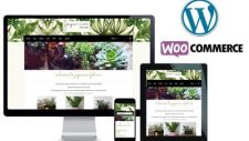 wordpress woocommerce website designer