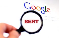 google bert update small business affects