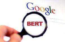 google bert update small business affects
